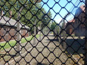 Вид на лагерь Освенцим I с двойным забором из колючей проволоки