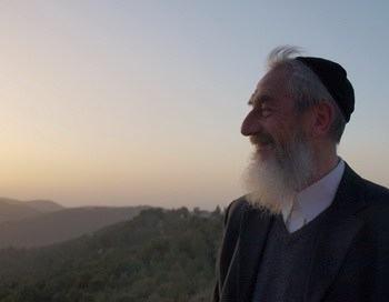 [Дебют] Гедалия Спинадель: Ваишлах. «Почему перебили всех мужчин Шхема»?!