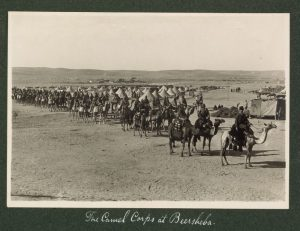 Турецкая «конница на верблюдицах». Отряд боевых верблюдов выступает из лагеря