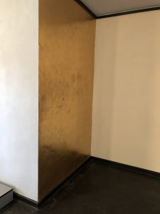 12. Золотая стена в гостиной