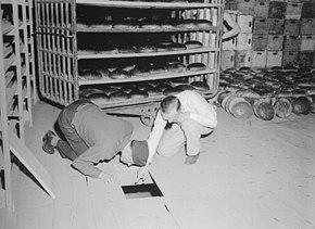 Следователи в Нюрнберге изучают тайник в пекарне, где прятали бутылки с мышьяком