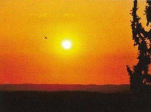 Лес Ятир — панорама на Юг